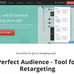 Perfect Audience - Tool for Retargeting 315