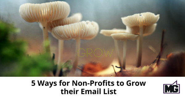 5 Ways for Non-Profits to Grow their Email List