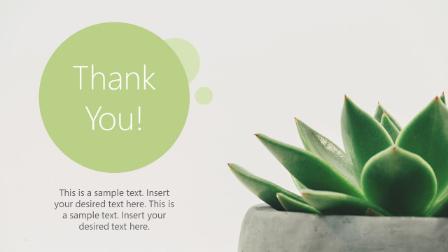 Thank you images powerpoint template