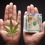 Marketing Tips To Help Grow Your Cannabis Business