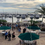 7 Reasons to Choose Tampa as Your Next Living Destination!