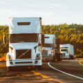 Choose the Fleet Management Company: All You Need To Know